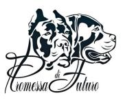 Cane Corso Gelderland Logo